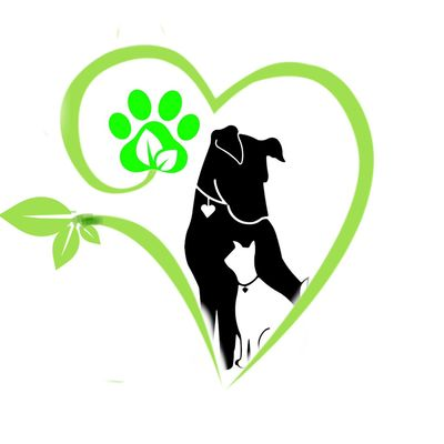 Avatar for Spruce Mountain Dog Training and Care