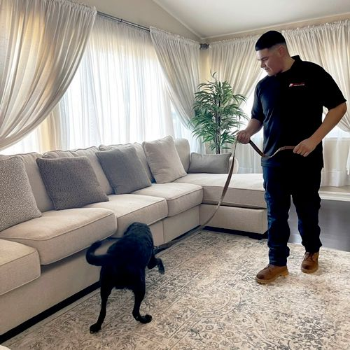 K9 handler Jordan and bed bug sniffing dog Raider performing an inspection.