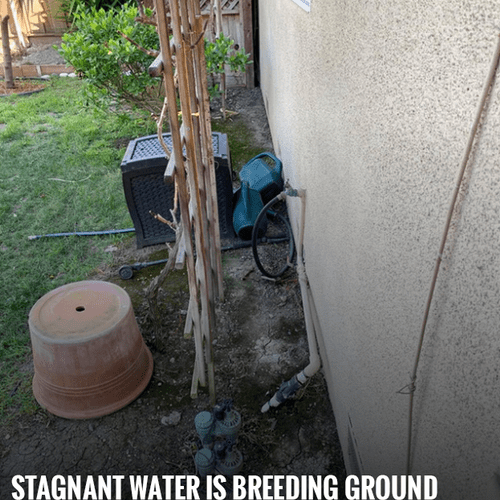 Stagnant water and damp material is a breeding ground for microorganisms, such as viruses, bacteria, and mold