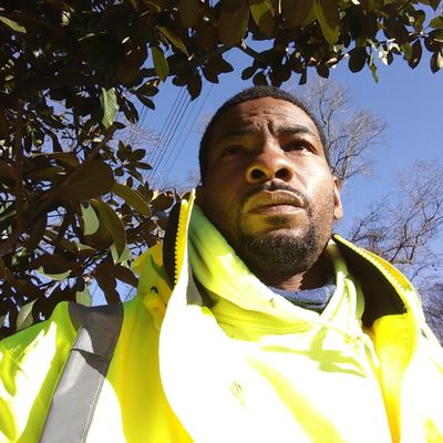 Avatar for Green Visuals Landscaping & Tree Service