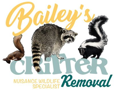 Avatar for Bailey's Critter Removal
