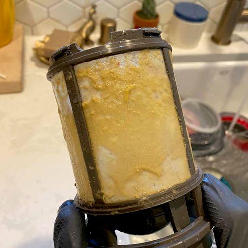 Before Dishwasher Filter
