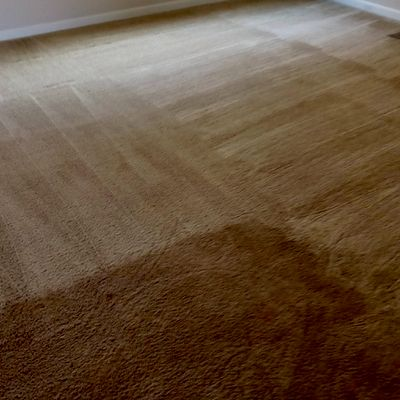 Avatar for Hunter's extreme carpet cleaning