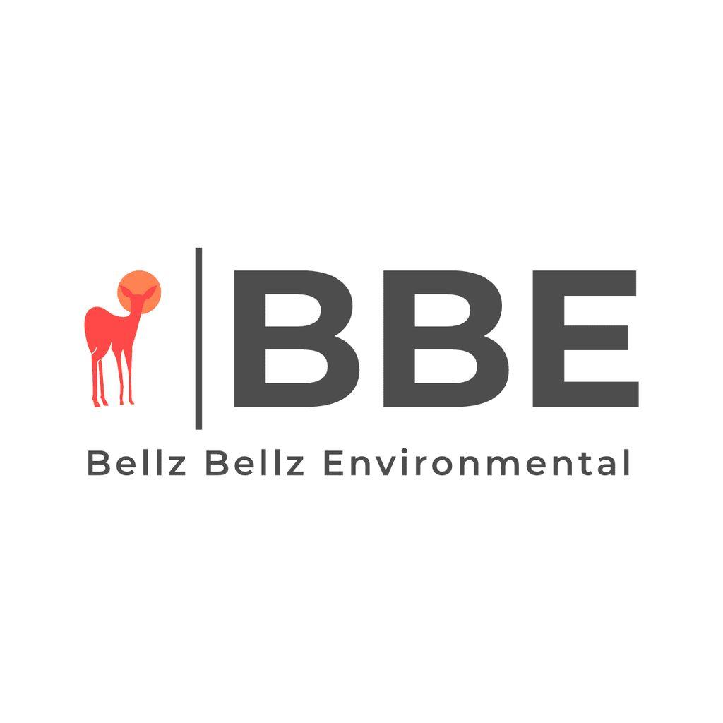 BBE Environmental
