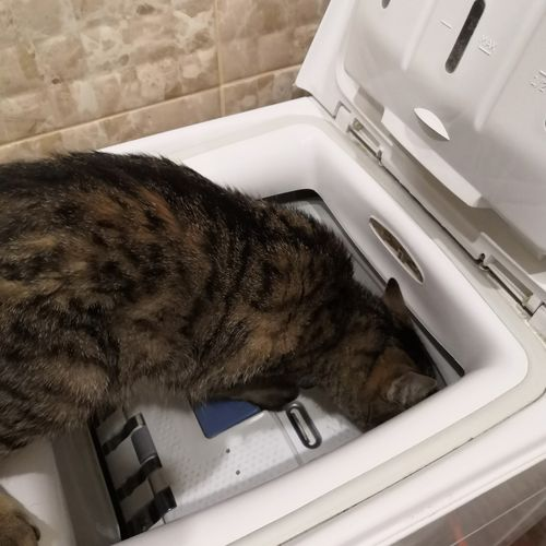 Our student checks the washer