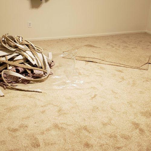 starting room  carpet intallation