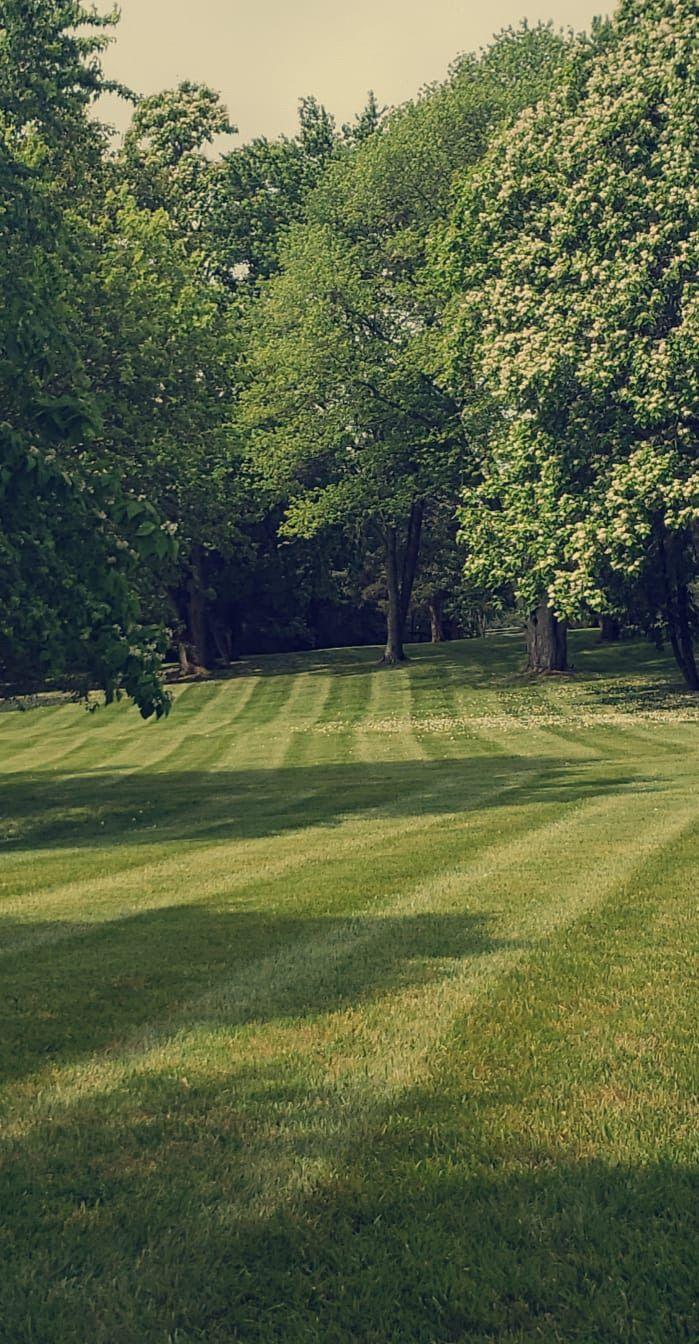 Salamanca's Landscaping LLC