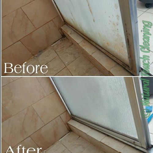 Mold & mildew removed