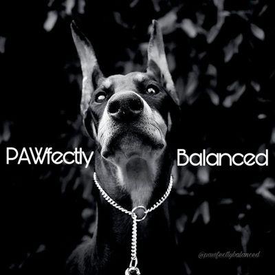 Avatar for PAWfectly Balanced Dog Training