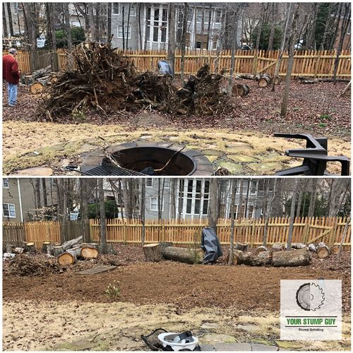 Blow over stumps from storm a couple months ago. You can see the height of them compared to the client.