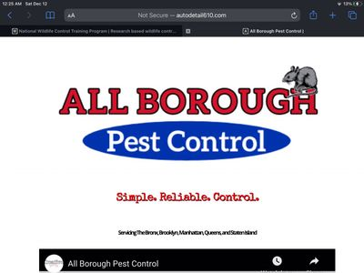 Avatar for AllBOROUGH PEST CONTROL