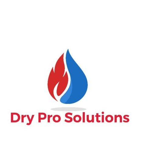 Dry Pro Solutions