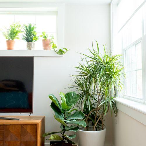 Global Bohemian Living Room