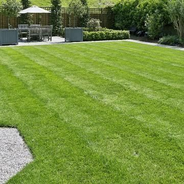 Central Valley LawnCare & Pressure washing