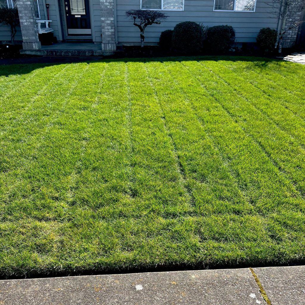 Flórez lawn care maintenance
