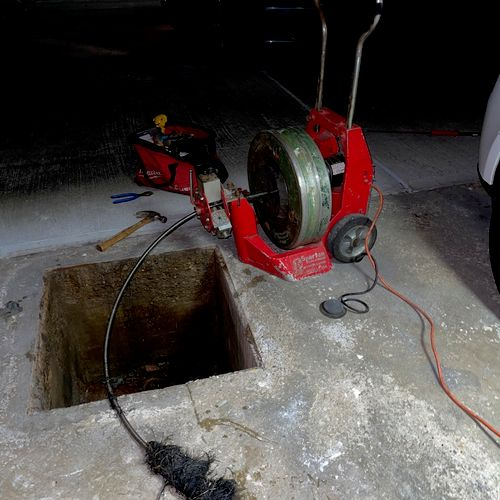 Main Sewer Drain Clogged with Roots