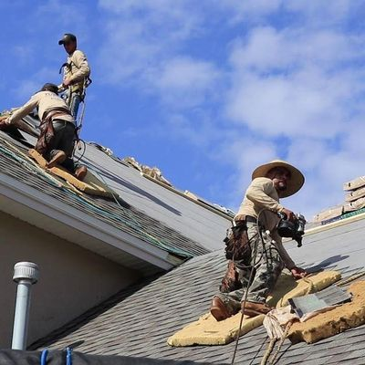 Avatar for Florida Roof Specialists