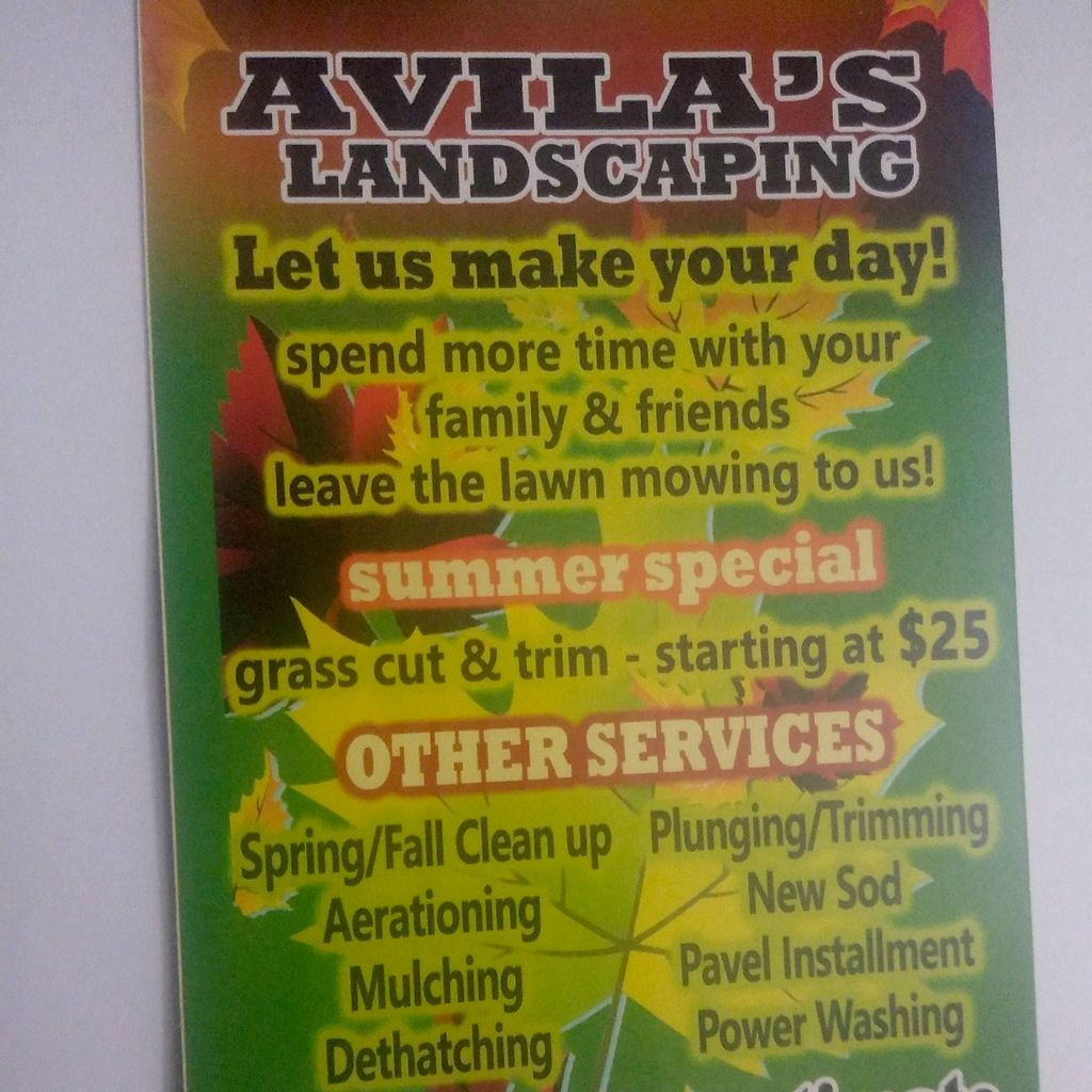 avila landscaping
