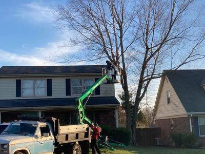 Avatar for Shouse tree service