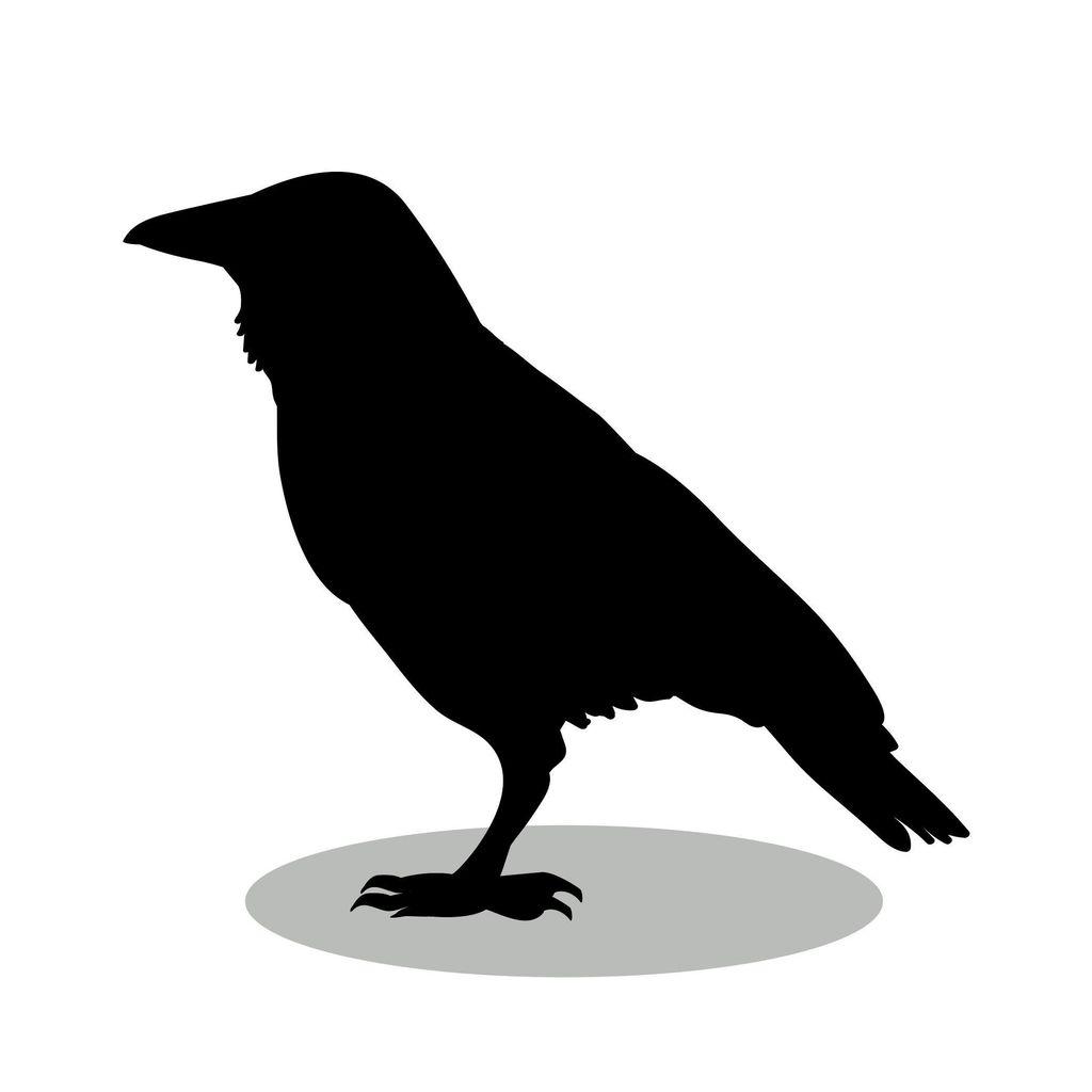 Blackbird Packing & Moving Supply