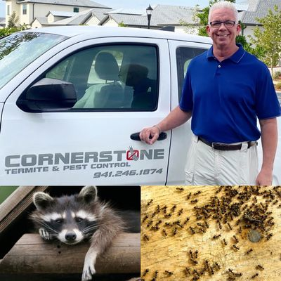 Avatar for Cornerstone Termite & Pest Control