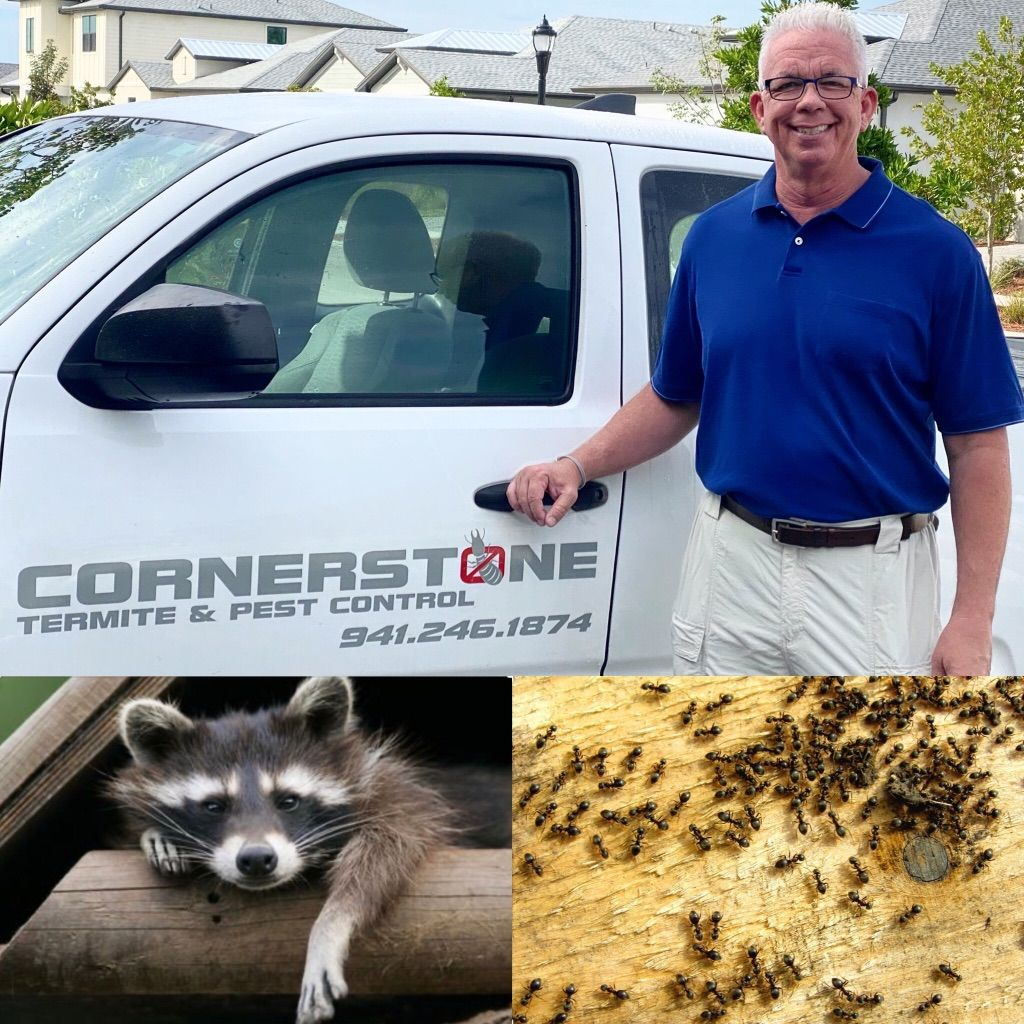 Cornerstone Termite & Pest Control