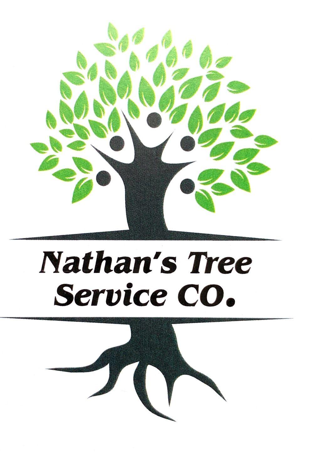 Nathan's tree service