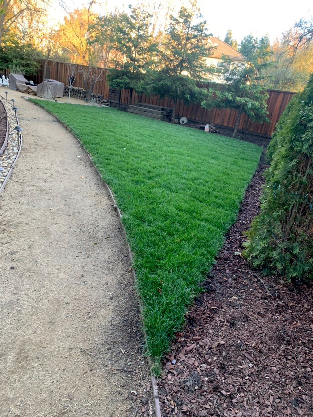Nicasio's landscaping