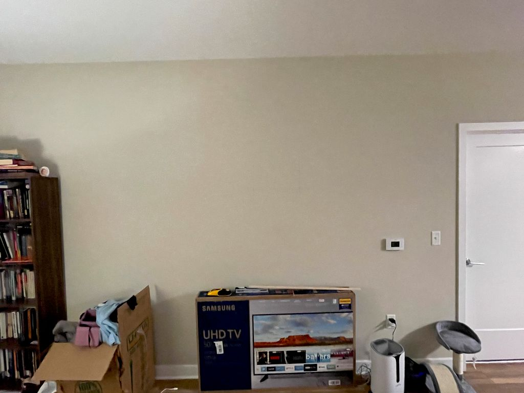 TV and Invisible Bookshelf Mounting