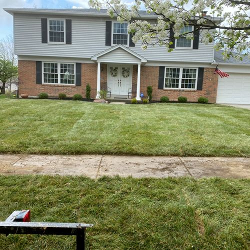 Tall Fescue grass Sod Installation