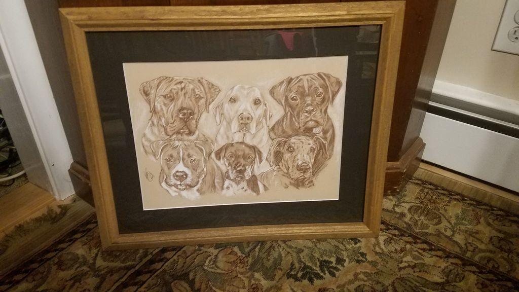 Dog Kennel Sketch