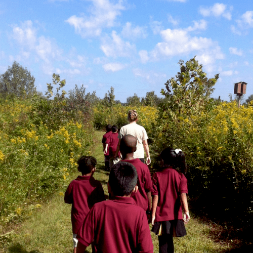 Field Trip to Shelby Bottoms Nature Center