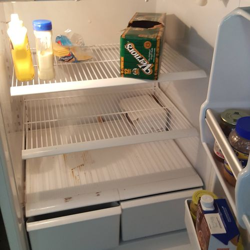 fridge ~ before cleaning