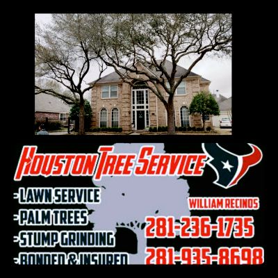 Avatar for Houston Tree service