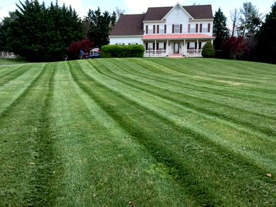 Avatar for Impressive Lawncare and Landscaping no in