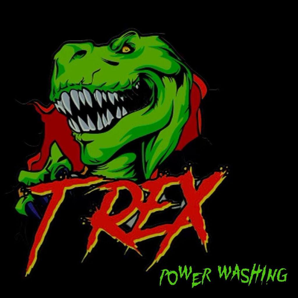 T-Rex Power Washing