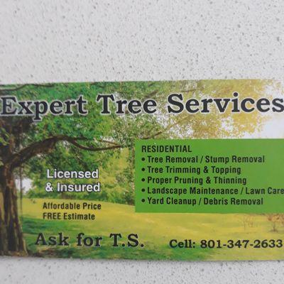Avatar for TS tree service