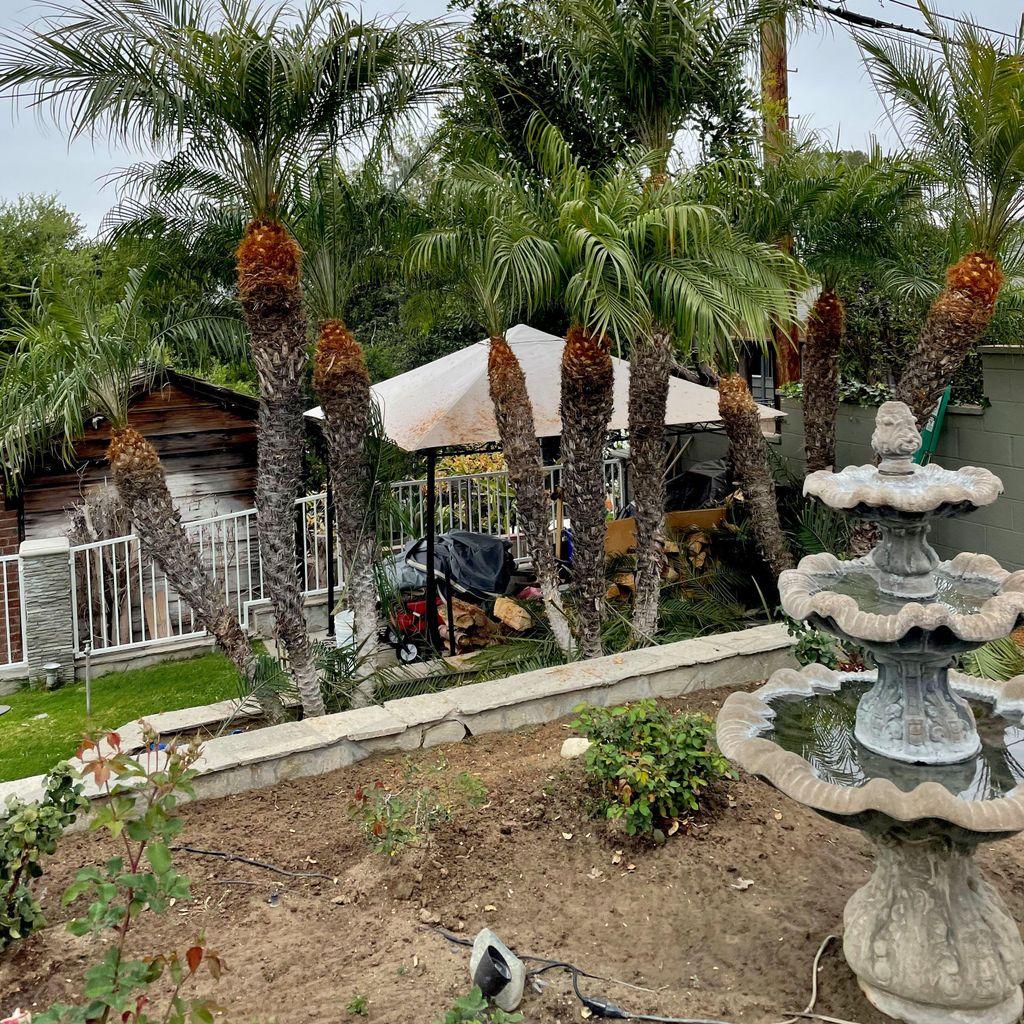 Elacios gardening