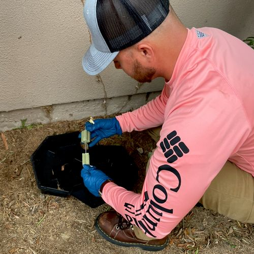 Rodents is our specialty! We check our boxes and refill them every time.