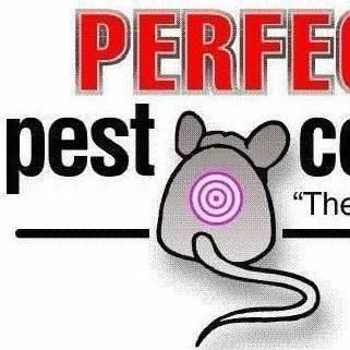 Avatar for Perfection Pest Control