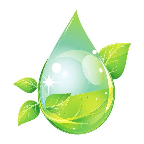 H20 Lawn Care & Landscaping