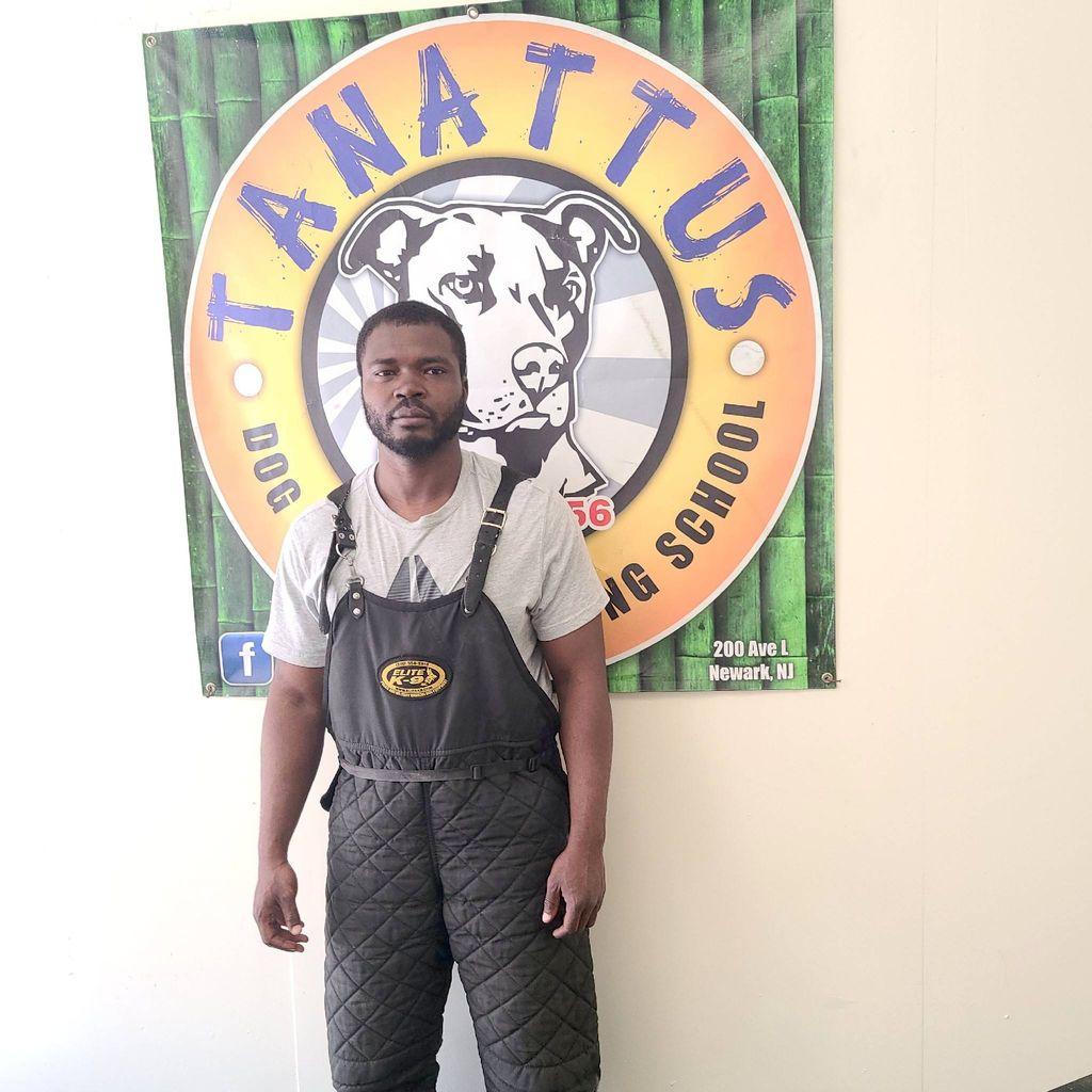 Tanattus Dog Spa & Training School