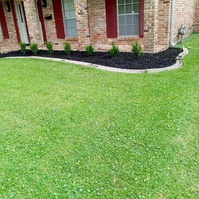 Avatar for Felo lawn care