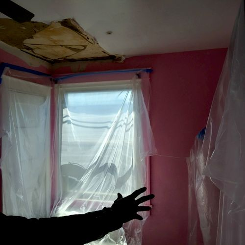Prep and Planning of Black Mold Removal and Remediation