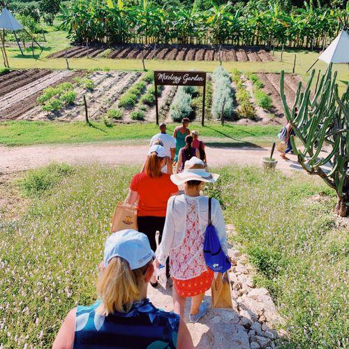 Team Meeting at a Farm in Mexico