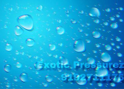Avatar for Exotic Pressurez Pressure Washing