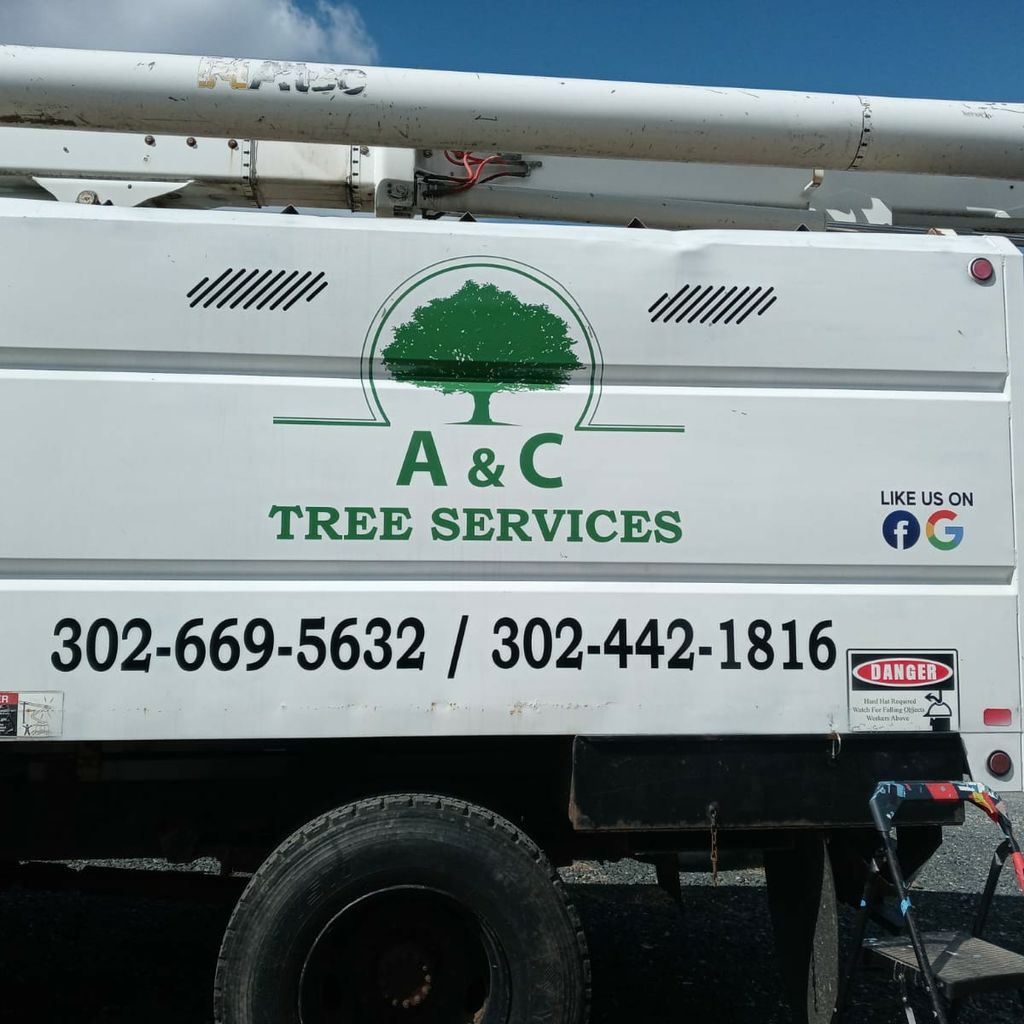 A&C Tree service Llc