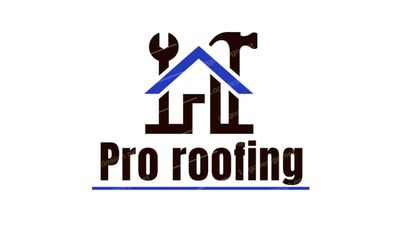 Avatar for Pro Roofing
