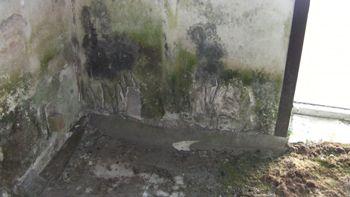 Mold Remediation Per EPA Protocol