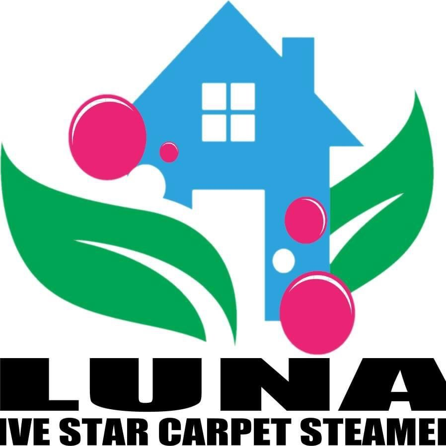 LUNA  CARPET STEAMERS